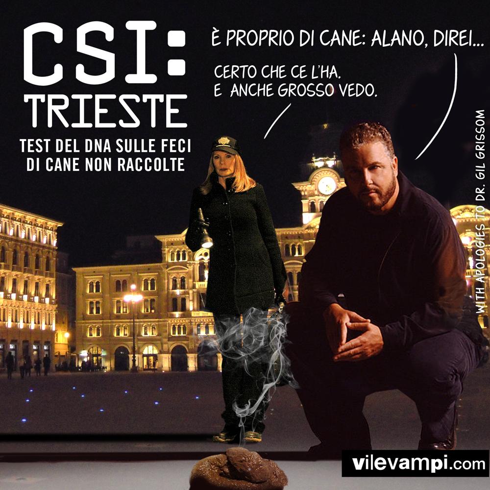 2016_CSI TRieste