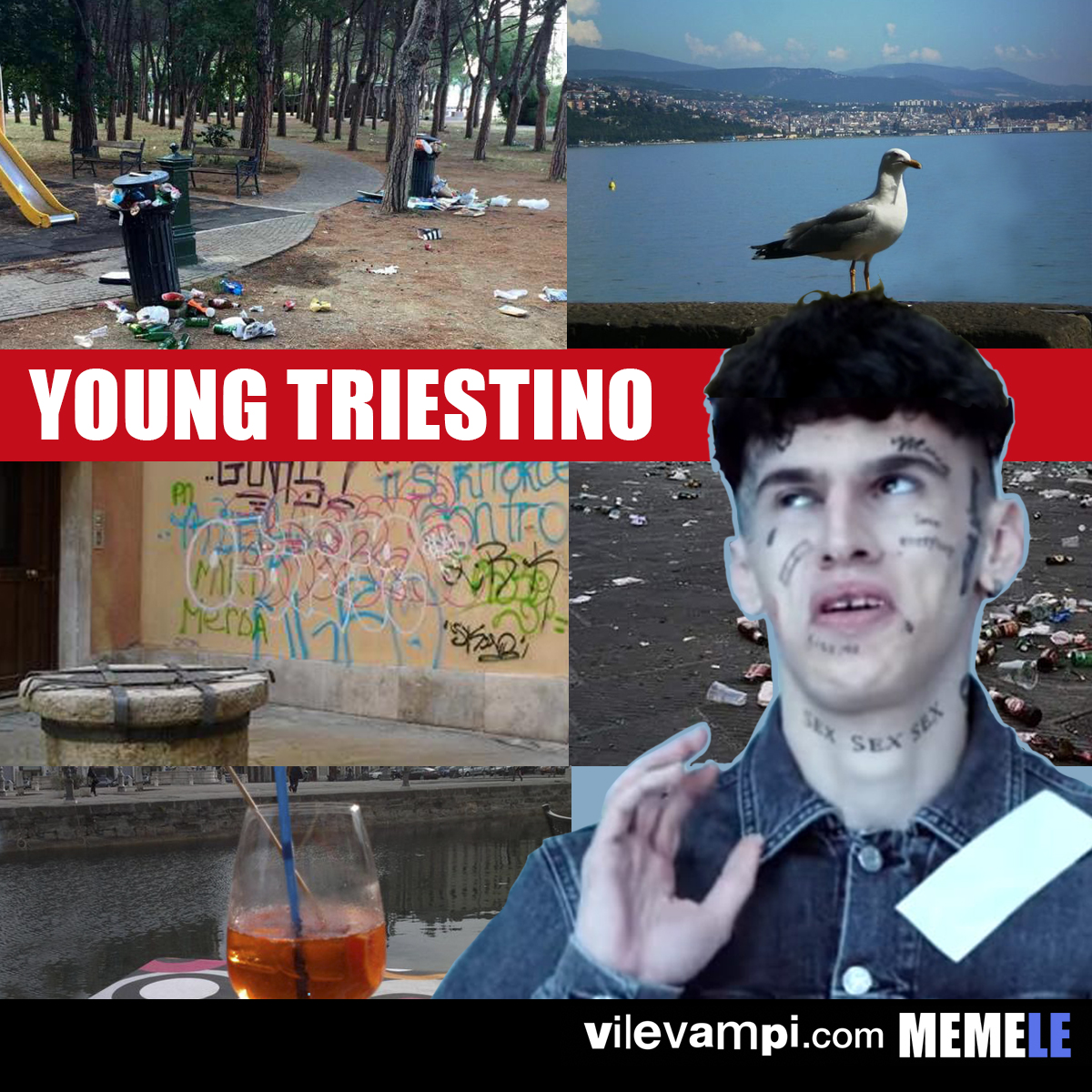 2018_young triestino