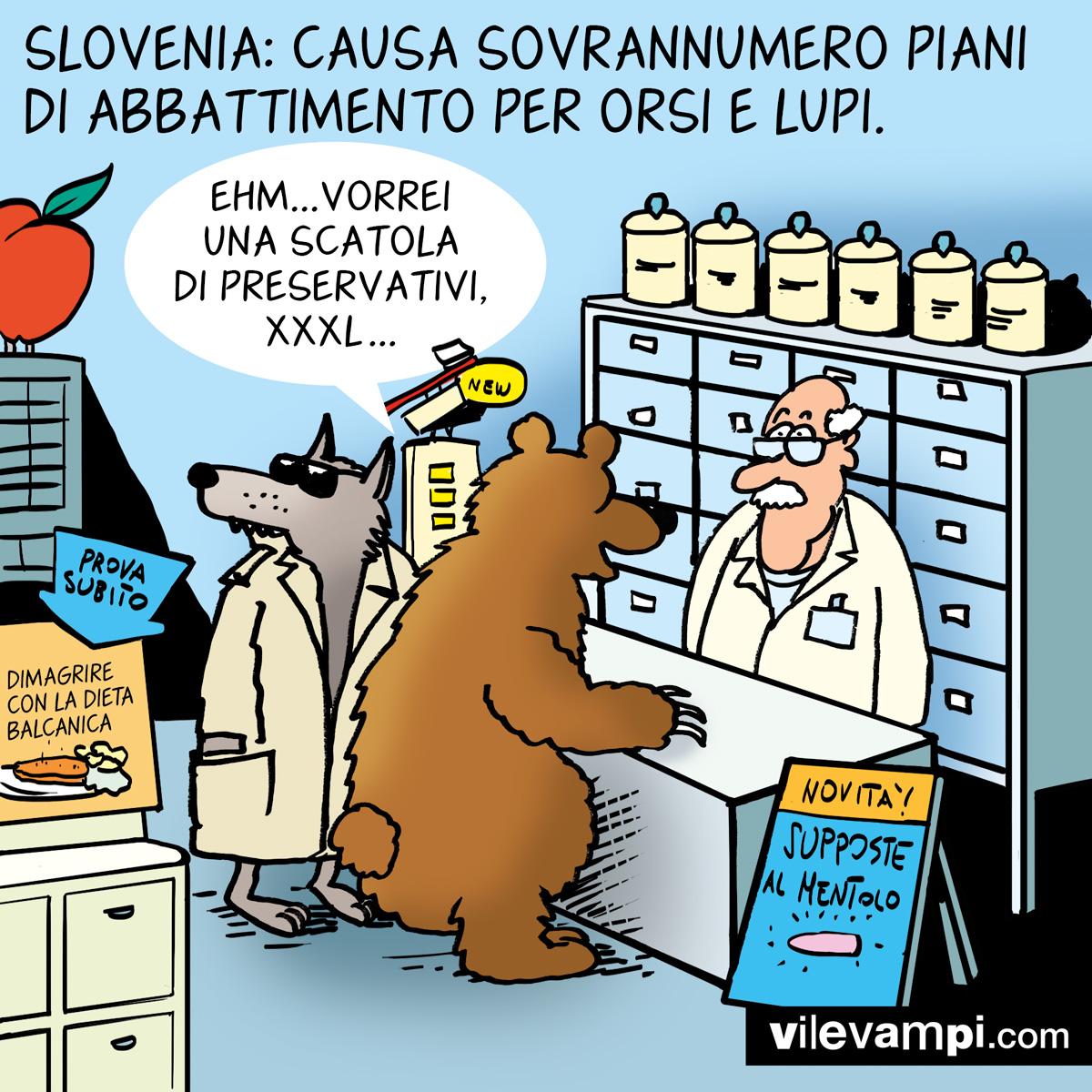 2019_Orso-farmacia